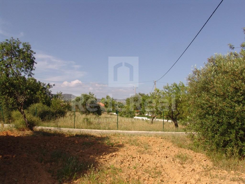 Rural Land  in Esteval (4)