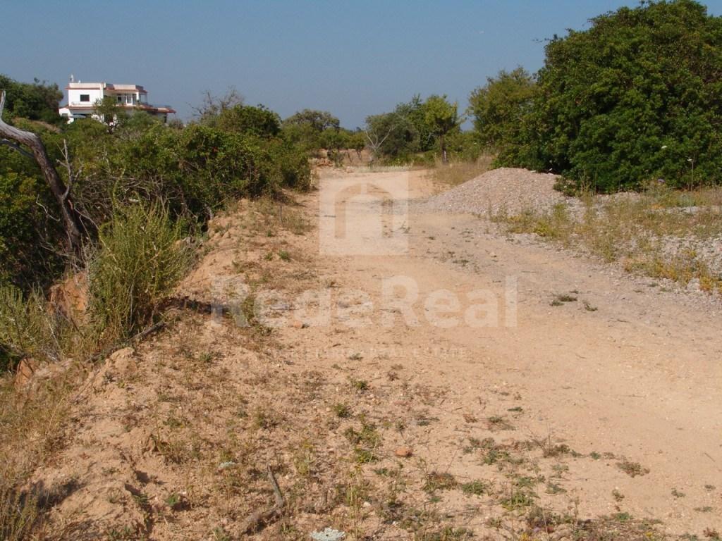Terrain rustique à Olhão (3)