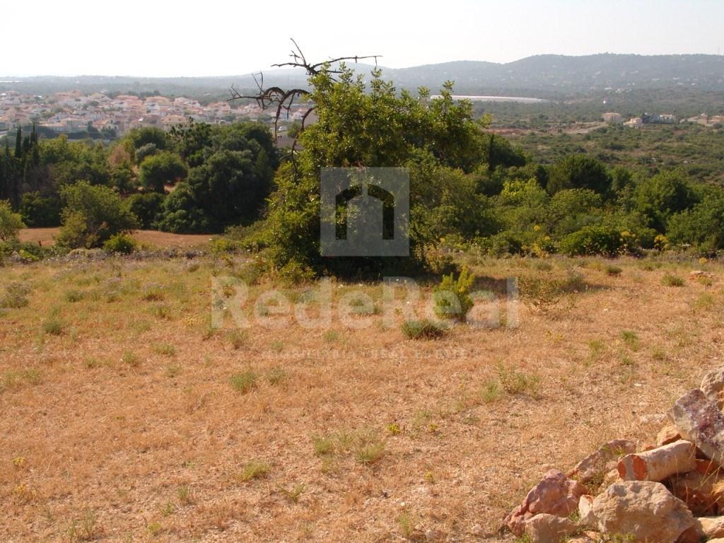 Terrain rustique à Olhão (5)