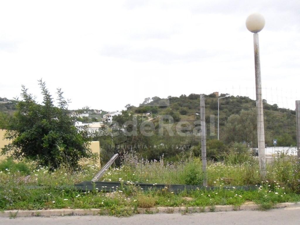 Plot in Goncinha (2)