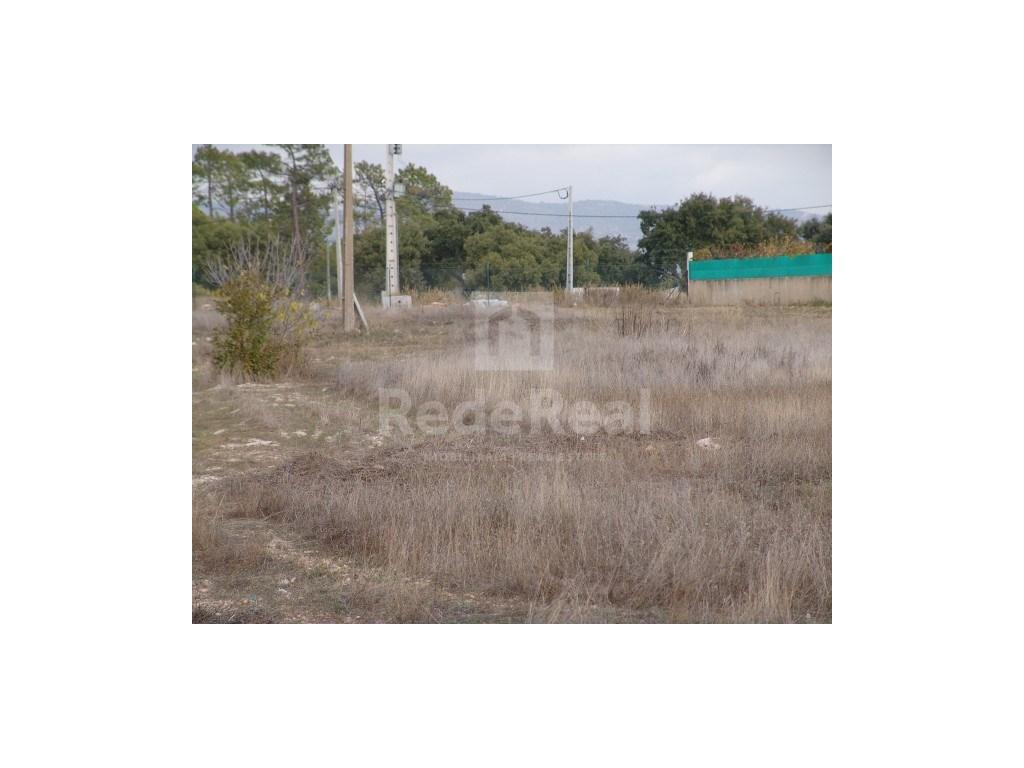 Mixed Land em Gambelas (2)