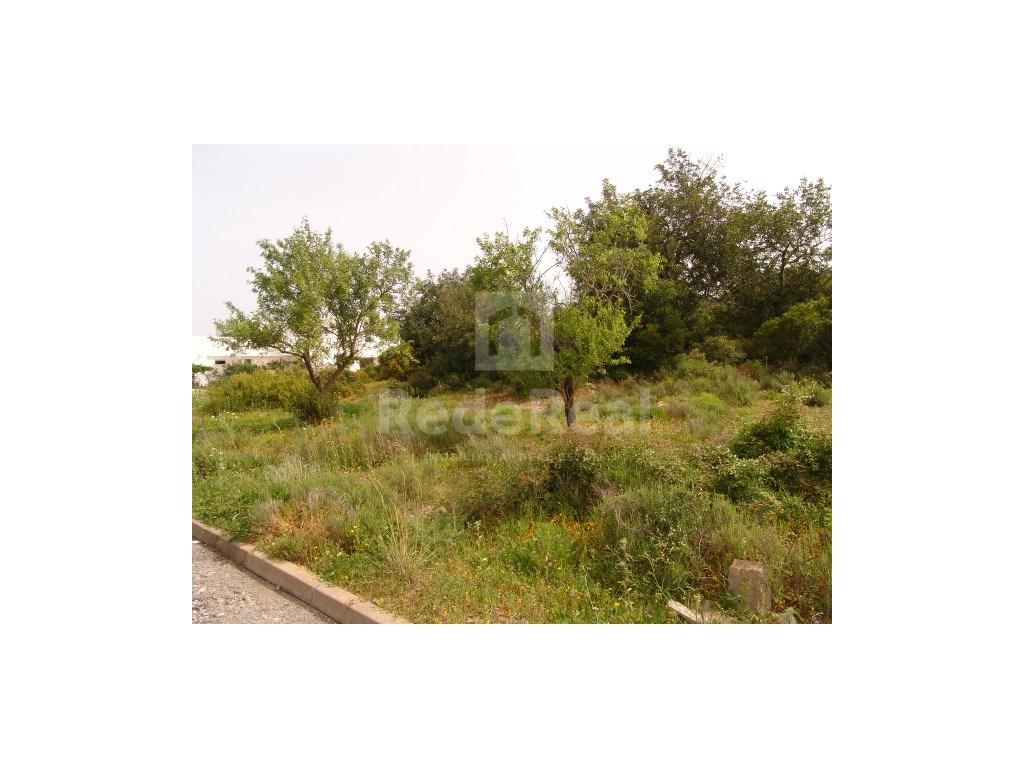 Plot  in Fornalha (1)