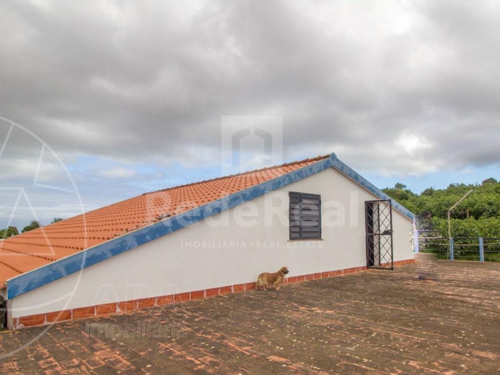 Rural farmhouse Olhão (25)