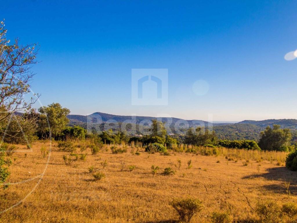 Rustic land in Santa Bárbara de Nexe (3)