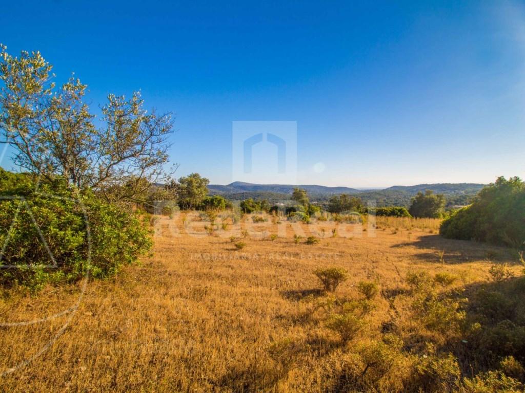 Rustic land in Santa Bárbara de Nexe (5)
