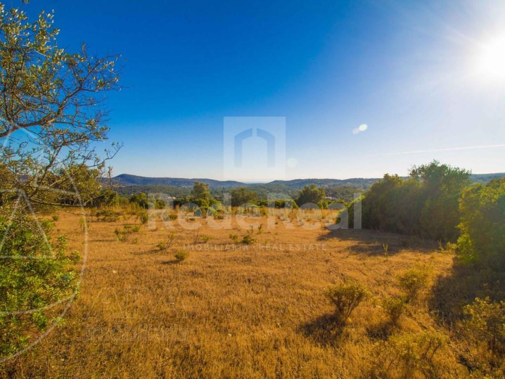 Rustic land in Santa Bárbara de Nexe (2)