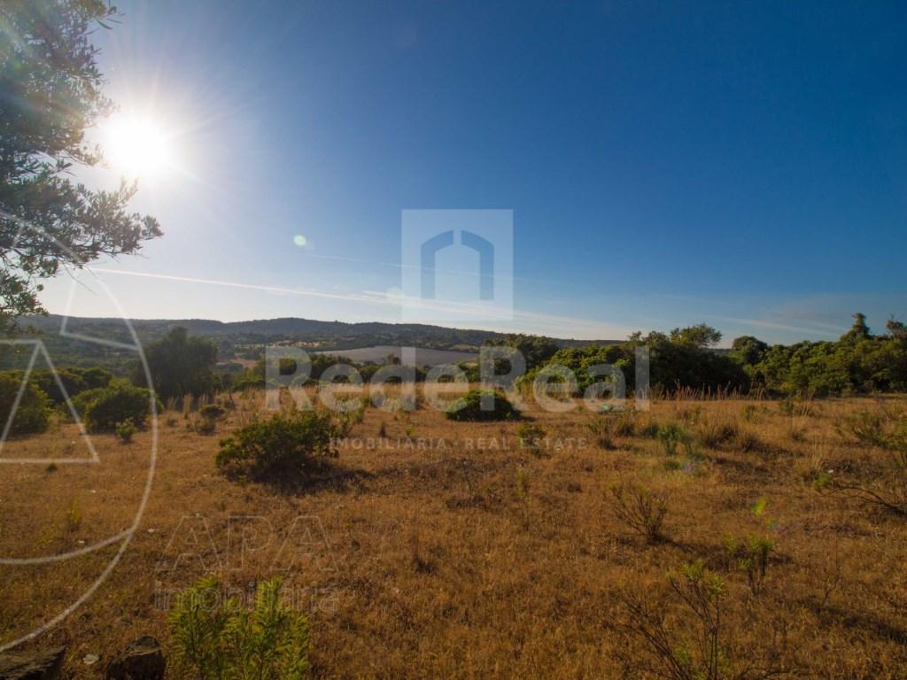 Rustic land in Santa Bárbara de Nexe (7)