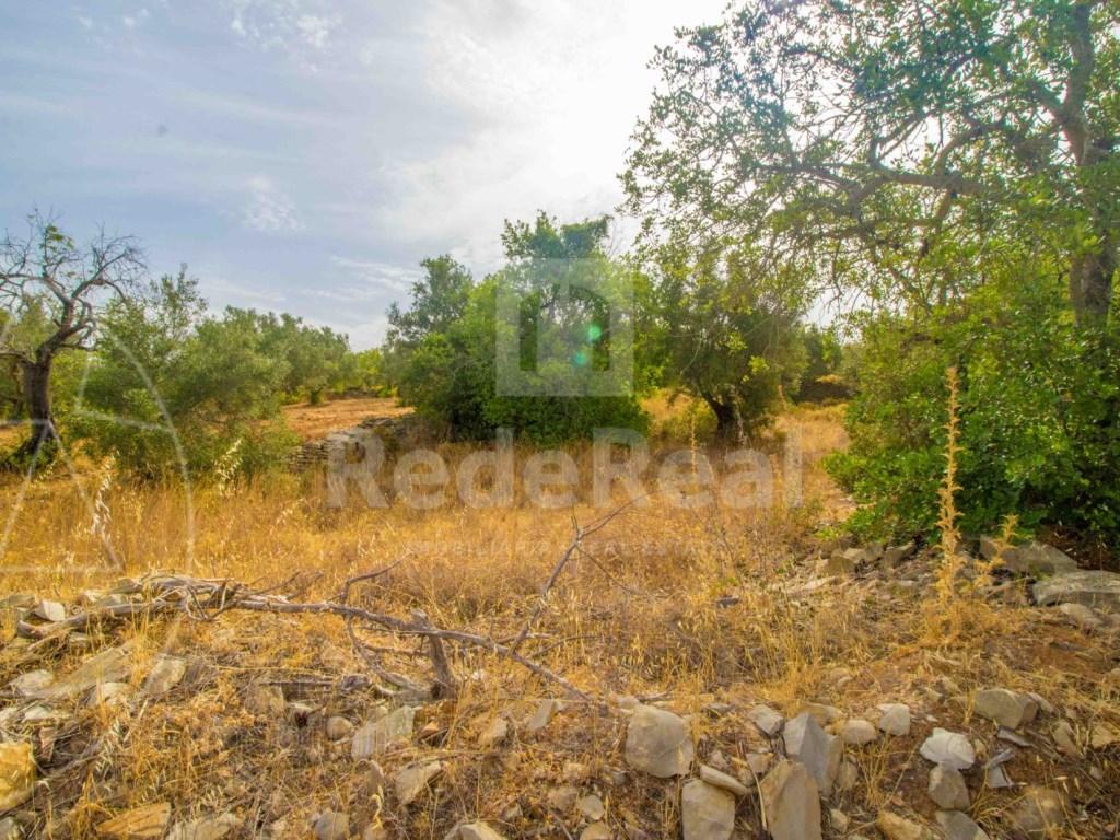 Plot rustic land Faro (1)