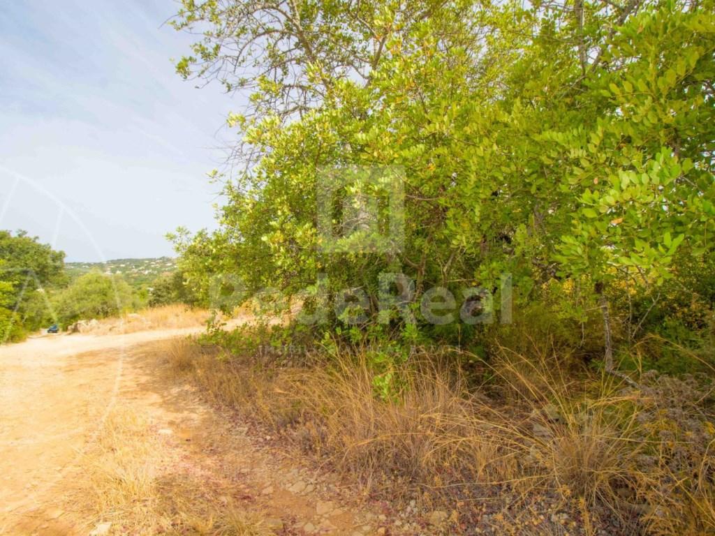 Plot rustic land Faro (2)