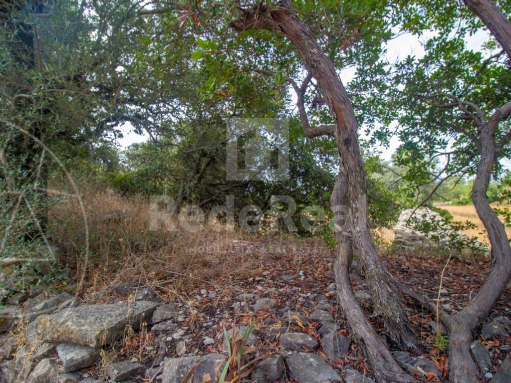 Plot rustic land Faro (4)