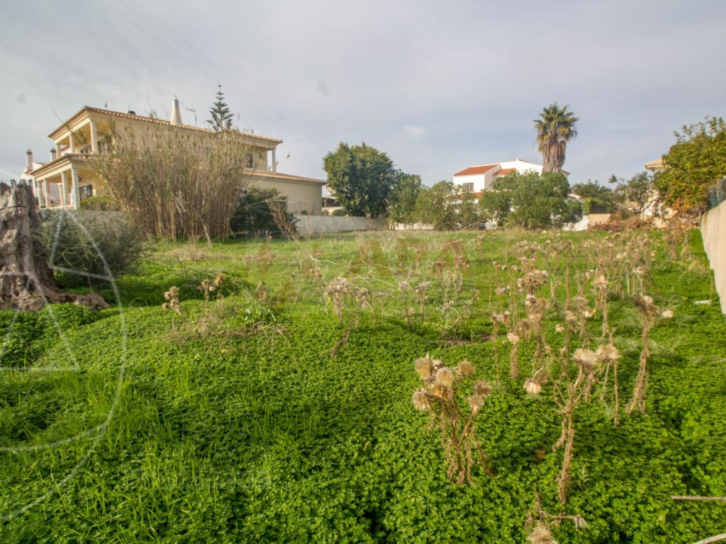 Terrain Urbain in Faro (Sé e São Pedro) (5)