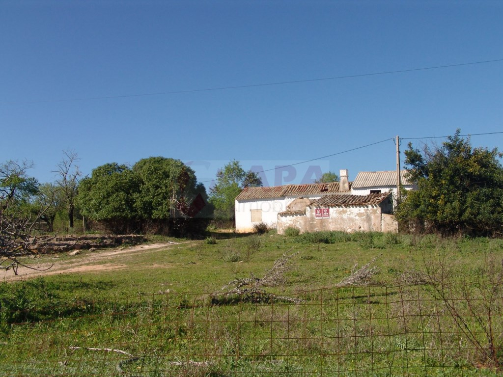 Terreno Misto em  Brancanes (5)