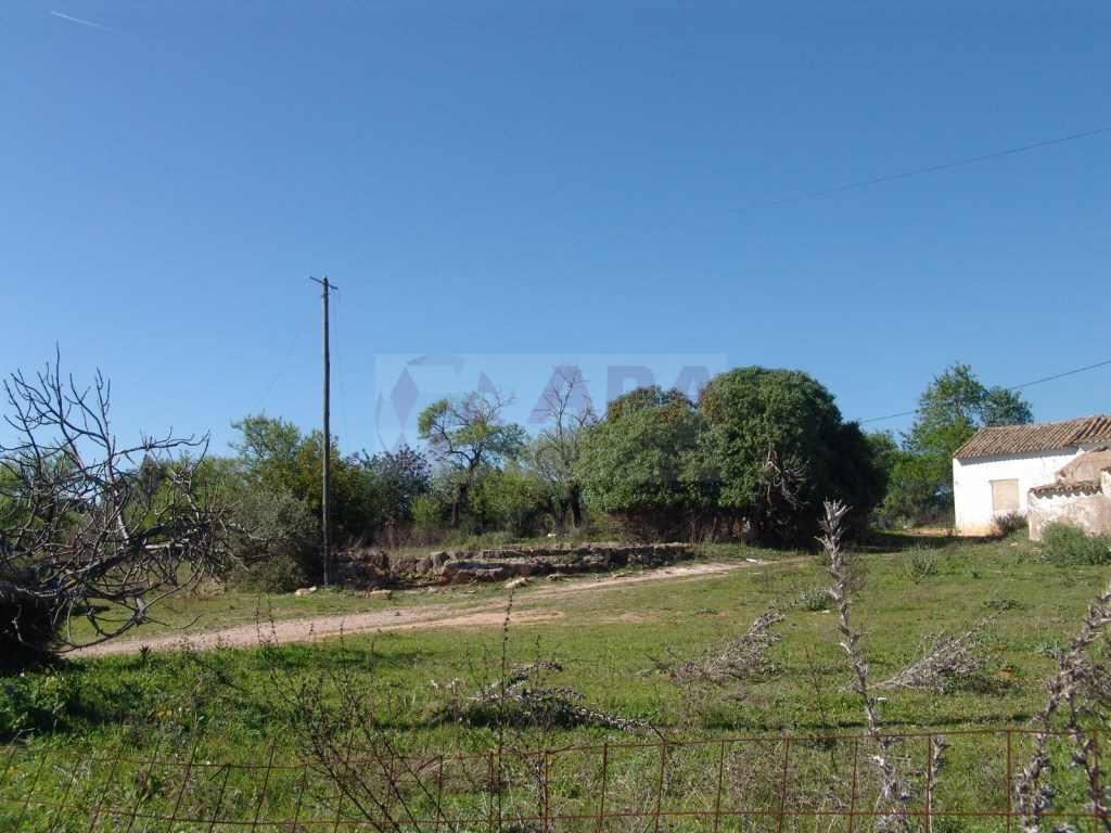 Terreno Misto em  Brancanes (7)