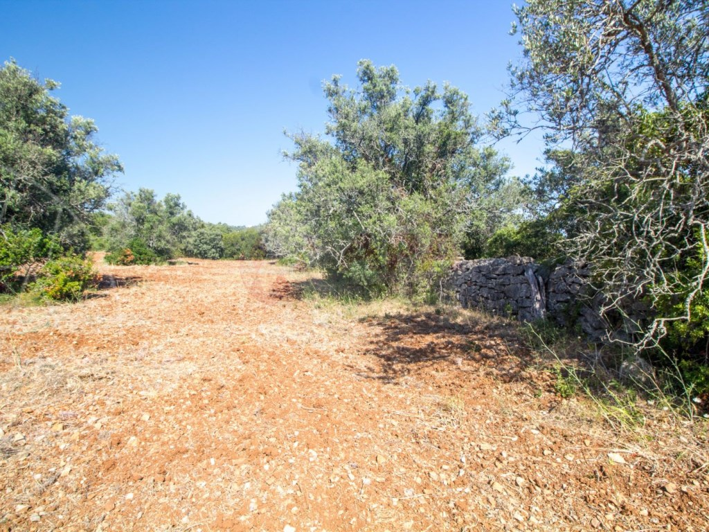 Rural Land in Santa Bárbara de Nexe (2)