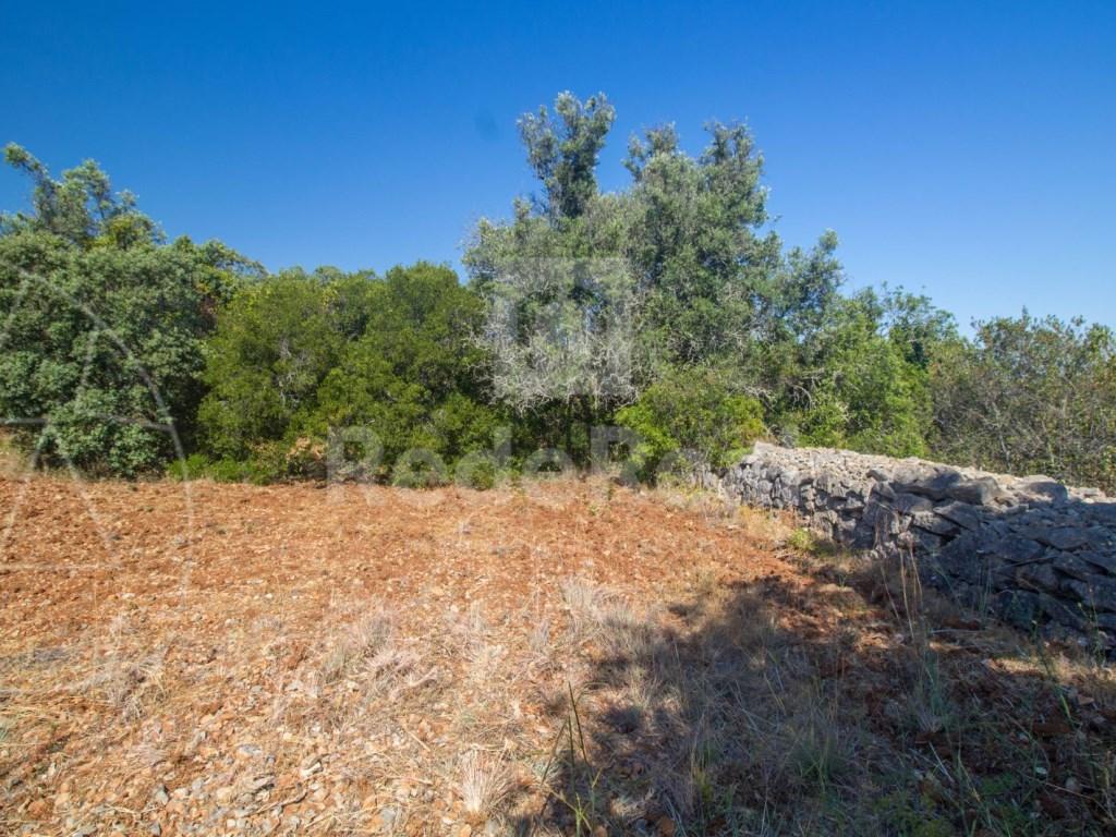 Rural Land in Santa Bárbara de Nexe (5)