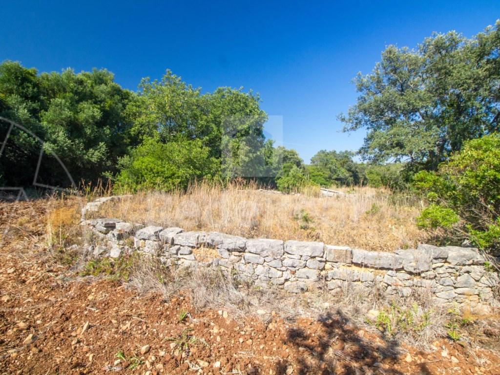 Rural Land in Santa Bárbara de Nexe (7)