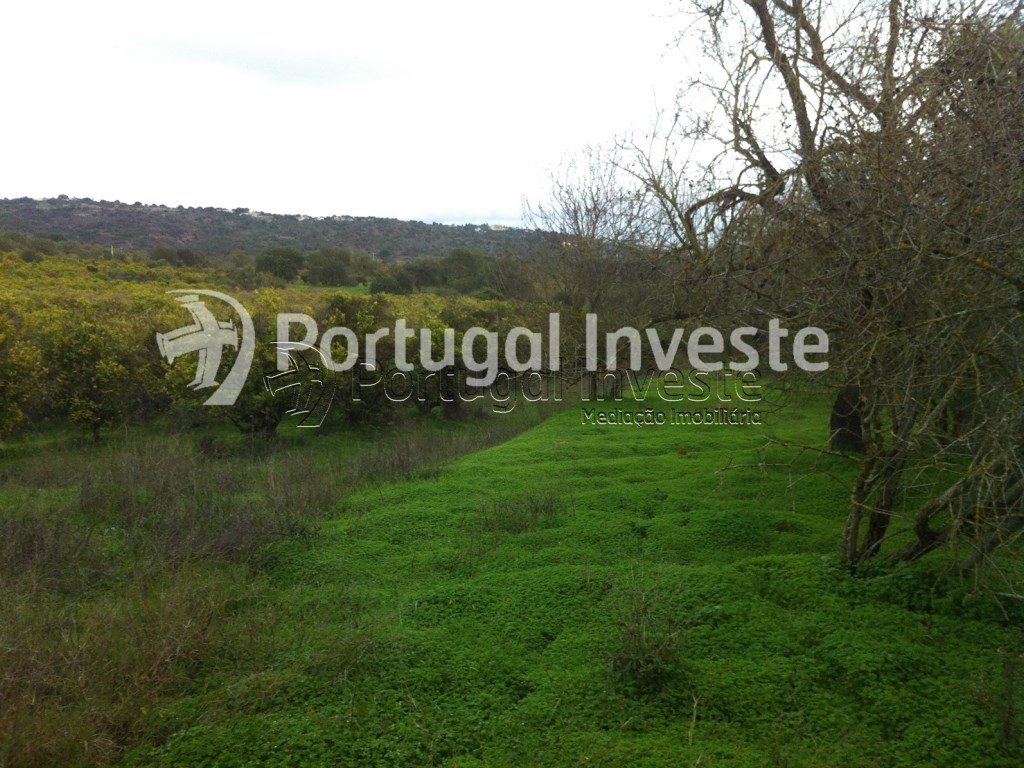 For sale rustic land with fertile land, very well located in Albufeira- Portugal Investe