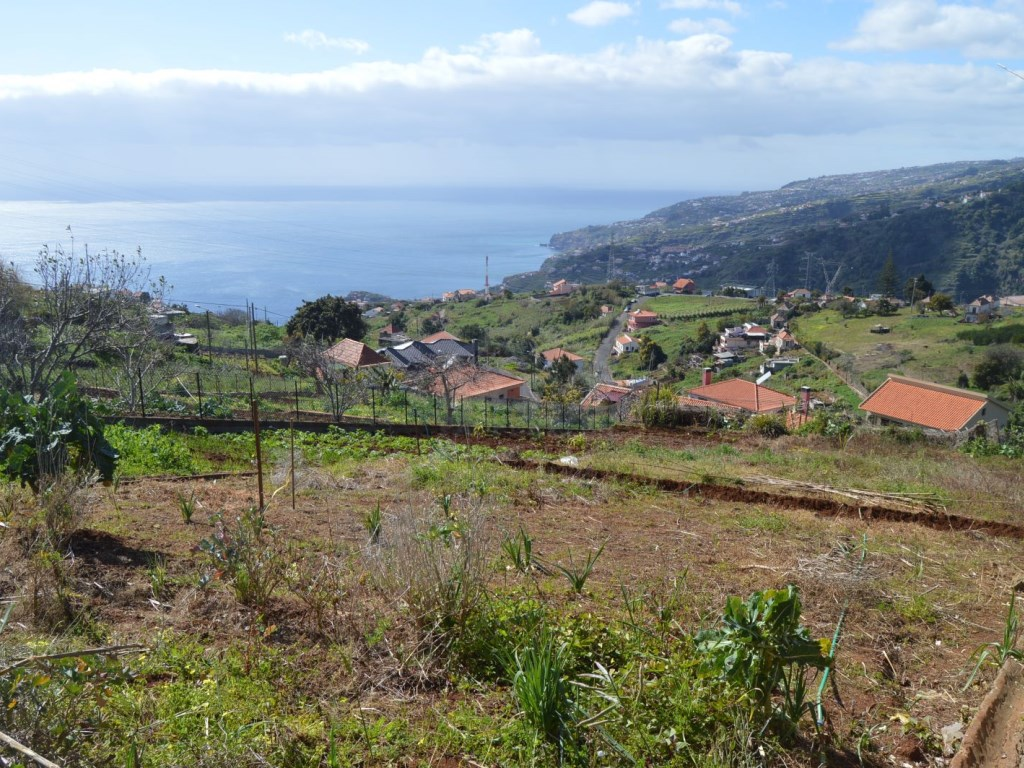 Plot of land for Sale in Ribeira Brava (2)