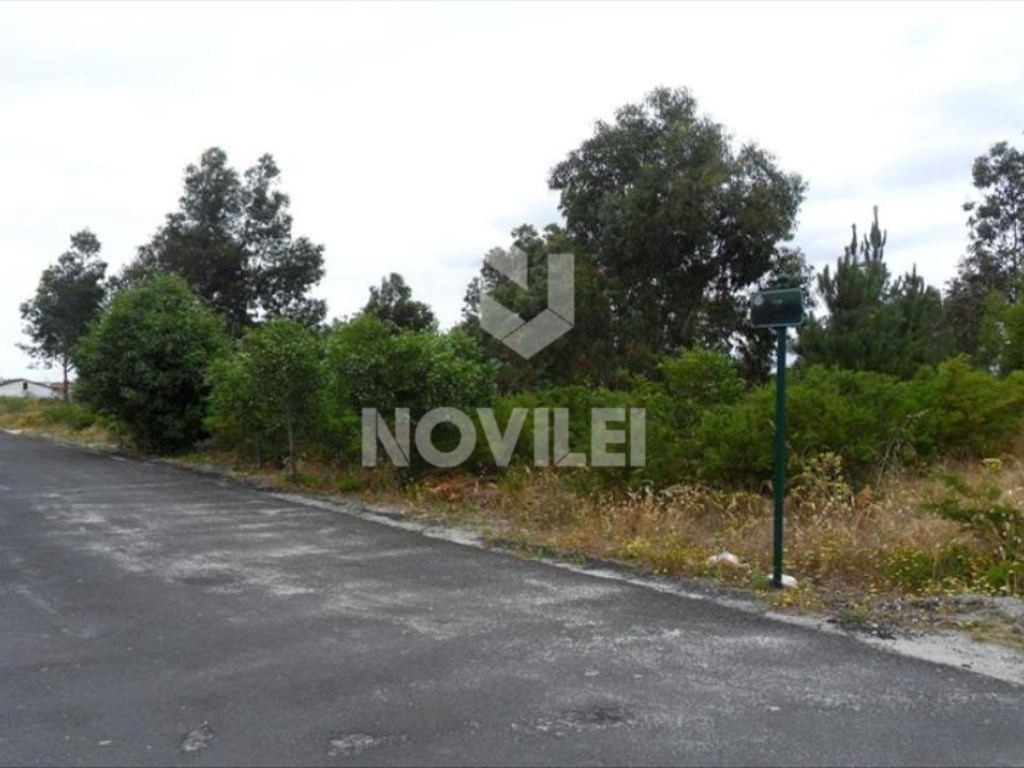 Flat terrain with 15,000 m2 next to the city of Marinha Grande