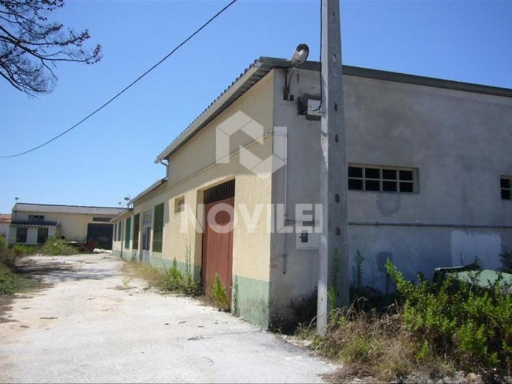 Warehouse near Zicofa, financed 100%