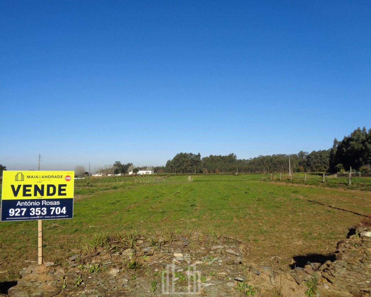 6bec25a468e Rural Land - Ovar - 228 - Maia   Andrade - Soc. Med. Imob.