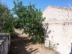 Old House to retrieve in the Algarve%11/14