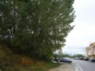 DownloadPhoto (1)%2/2