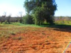 Rustic land with 11240 m ² in Estói. |