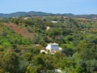 Farm with three houses in Luz de Tavira! | 3 Bedrooms | 3WC