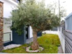 Villa for sale with swimming pool, contemporary style, garden Portugal Investe%33/39