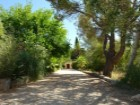 Plot or Plot between Sa Pobla and Pollensa._11%11/13