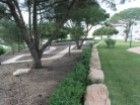 Apartment › Cascais | 2 Bedrooms