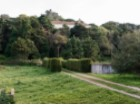Farm for sale in Setubal with 22.6 hectares |