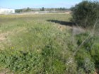 Rural Land › Beja |