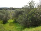 Building plot in Bemposta, Alvor |