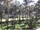 APARTMENT T2 GARDEN HERDADE DA AROEIRA-GOLF RESORT |