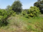 Villa with land in Quelfes%15/18