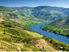 douro_valley%6/16