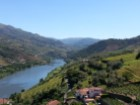 DOURO ESTATE%12/16