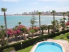 Apartments for rent in El Campello Beach Muchavista Alicante Costa Blanca | 2 Bedrooms | 2WC