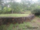 GALLE/HABARADUWA/ DIRECT SEA VIEW BUILDING PLOT/290 PERCHES/SQ.M 7335 |