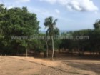 EXTRAORDINARILY BEAUTIFUL BEACH PROPERTY/KUDAWELLA/ 729 PERCHES (SQ.M 18225) |