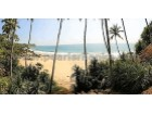 Sea View Property/748 Perches ( Sq.m18919/ 4.68 acres) |