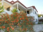 House › Tomar | 3 Bedrooms | 3WC