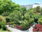 Houses for Sale Prime Properties Madeira Real Estate (28)%30/31