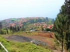 Land Ponta do Sol Prime Properties Madeira Real Estate %1/2