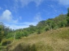 Plot of land for sale - 2 hectares - Prime Properties Madeira Real Estate (1)%3/10