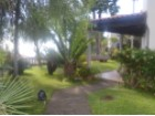Traditional House for Sale Funchal Madeira - Quinta Prime Poperties Madeira Real Estate (5)%3/22