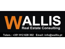 Wallis Real Estate Consulting - novo%1/1