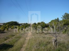 LAND WITH RUIN FOR SALE IN QUARTEIRA%5/16